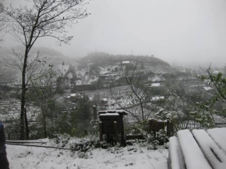 Tuyết Sapa